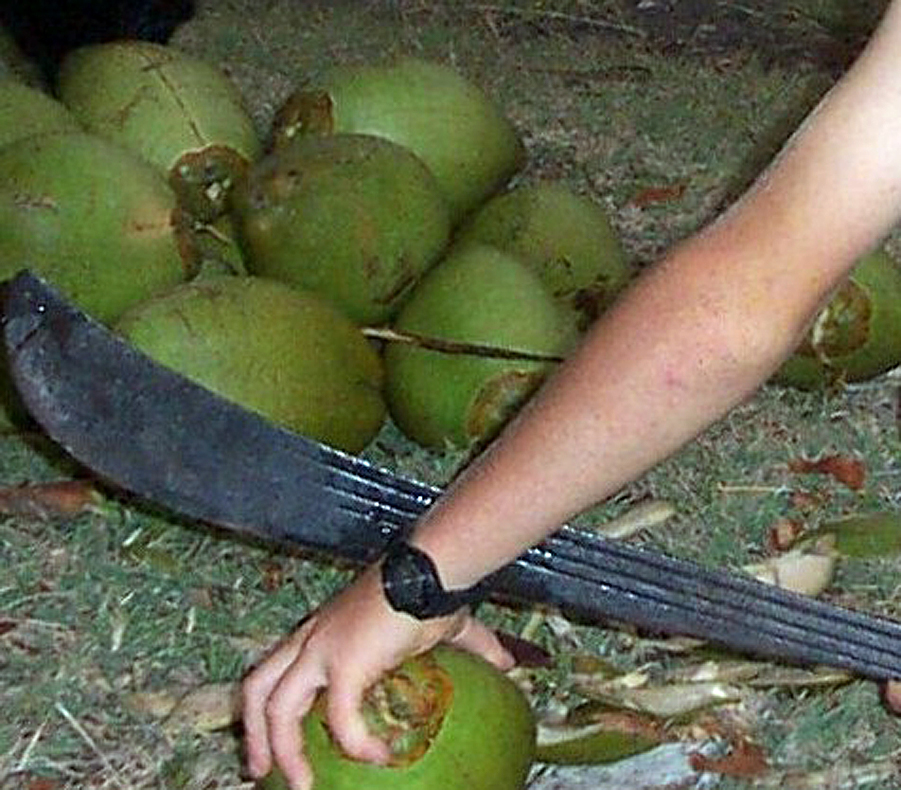 how to cut a coconut with a machete