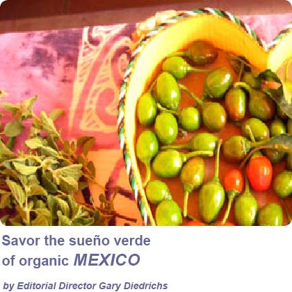 Mexico box2