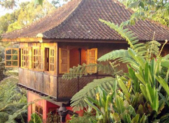 Sarinbuana Jungle House