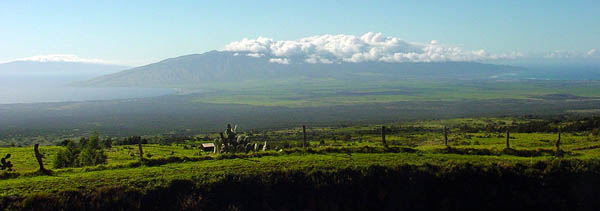 Upcountry on Maui, Hawaii, USA