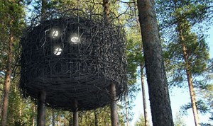 The Bird's Nest, Treehotel near Harads, Sweden