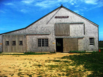 historic Katama Farm on Martha's Vineyard, Cape Cod, Massachusetts, USA