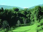 Kathmandu: hunt for the green heart