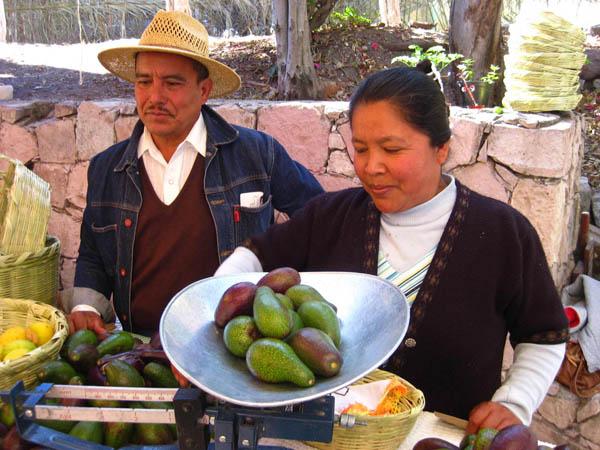 Organic farmers market in San Miguel de Allende, Guanajuato, Mexico