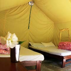 Safari tent at The Last Resort in Nepal