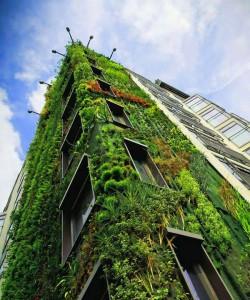 Generic green hotel