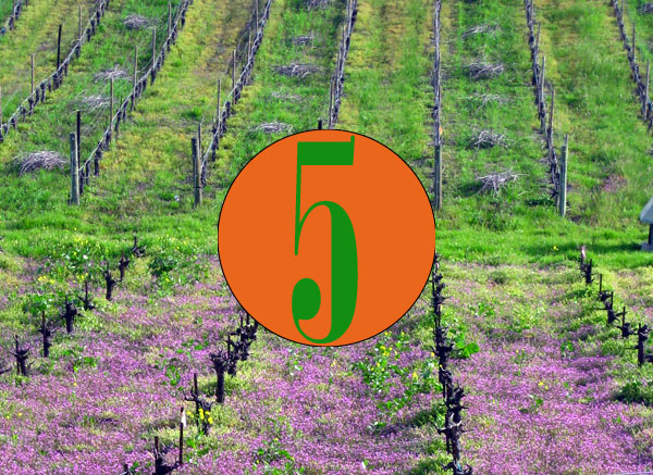 5 great Green Wine Country to do's