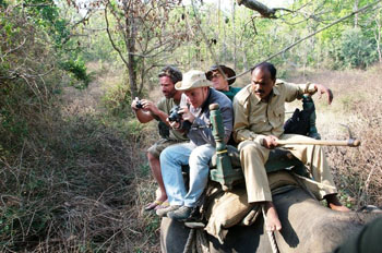 Elephant-back tourists, Kanha National Park in India