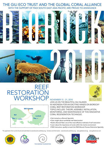 Biorock 2010 poster, Gili Eco Trust in the Gili Islands, Indonesia