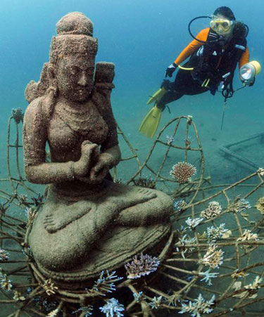 Coral Goddess biorock reef by Cynthia Gregory in Bali, Indonesia