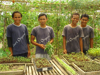 Young farmers, Sari Organic Farm near Ubud, Bali, Indonesia