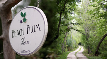 Certified organic Beach Plum Farm in West Cape May, NJ, USA