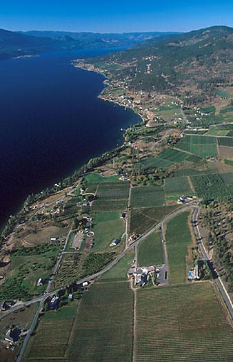 Vineyards, croplands of Okanagan Valley, British Columbia, Canada