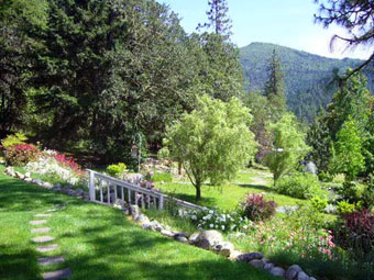Meadow, Flery Manor B&B near Grants Pass, Oregon, USA