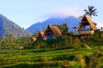 Bali: green inspiration at Desa Atas Awan eco-boutique resort
