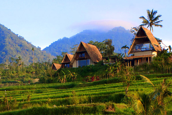 Desa Atas Awan, eco-boutique resort in Bedugul, Bali, Indonesia