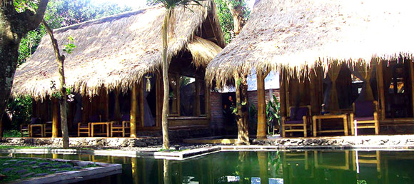 Guest houses, OMunity in Sudaji, Bali, Indonesia