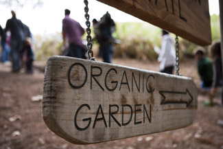 Organic garden, El Capitan Canyon in Santa Barbara, Calif., USA