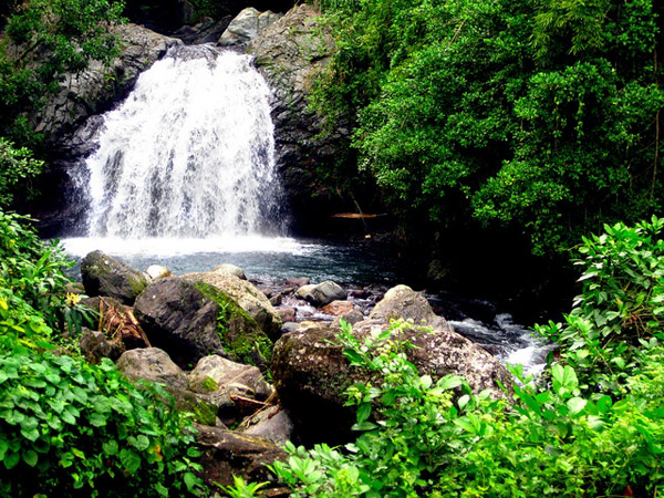 Enjoying eco-friendly travel in Jamaica - Dunn's River Falls (Daryle Dickens)