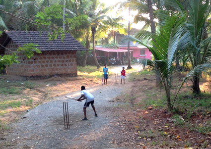 Village cricket near Alila Diwa - Goa, India