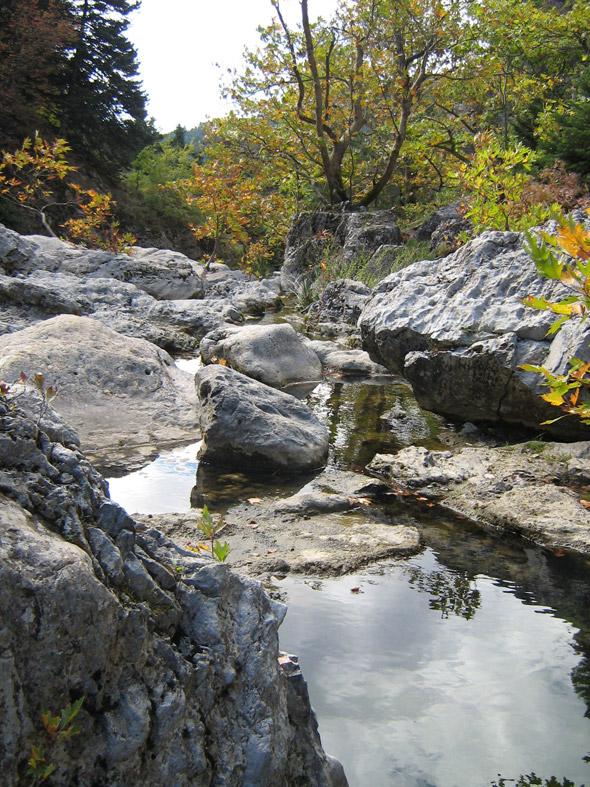 Stream near Eleonas Agrotouristic Hotel - Evia, Greece