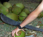 maui-Coconut-meets-machete1
