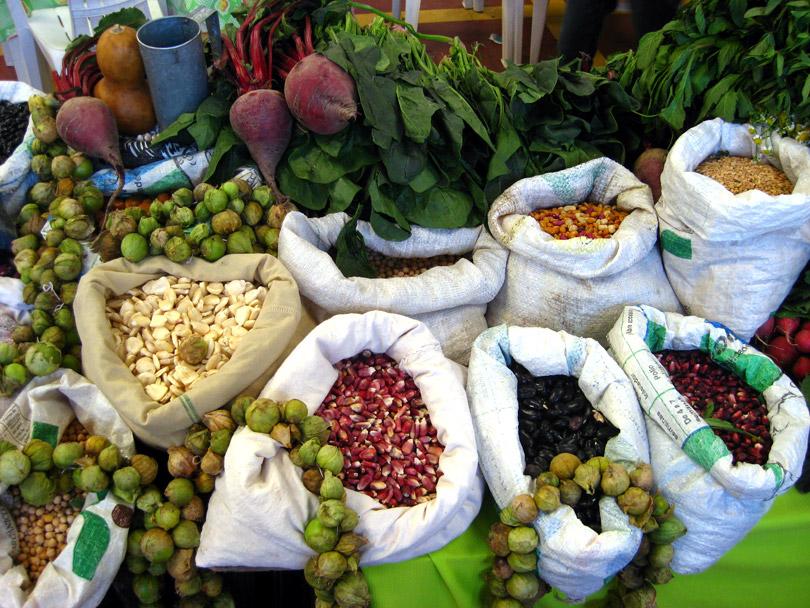 Saturday organic market - Coatepec, Veracruz, Mexico
