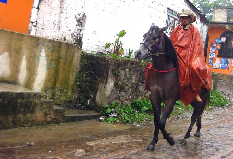 Caballero - Xico, Veracruz, Mexico