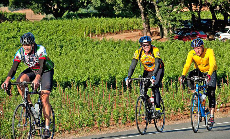 biking-California-wine-country