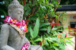 Aqua Bamboo: a green sanctuary in the heart of Waikiki