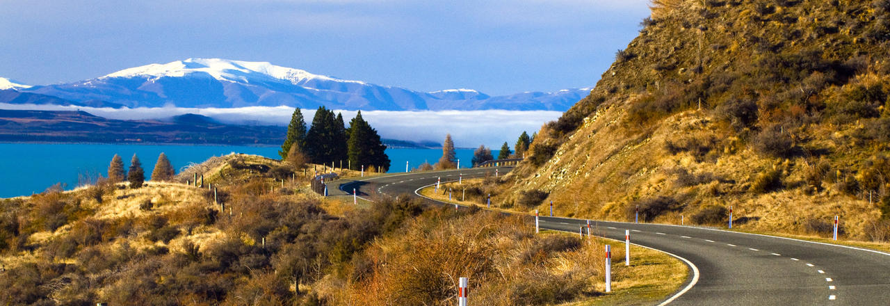 driving in new zealand