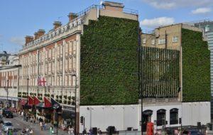 Living wall, Rubens at the Palace Hotel - London, UK